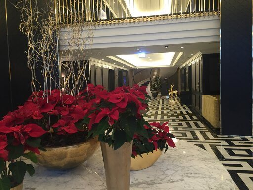 The lovely Christmas poinsettia display in the lobby at the Hilton Vienna Plaza