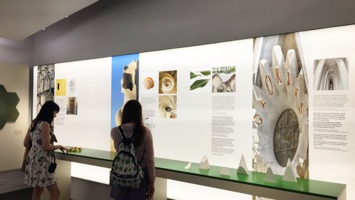 In the 'Inspired by nature' section of the Sagrada Família Museum, visitors are able to touch the displays to help them understand how important observing and analysing nature was in the development of Gaudí's formal, symbolic and building solutions.
